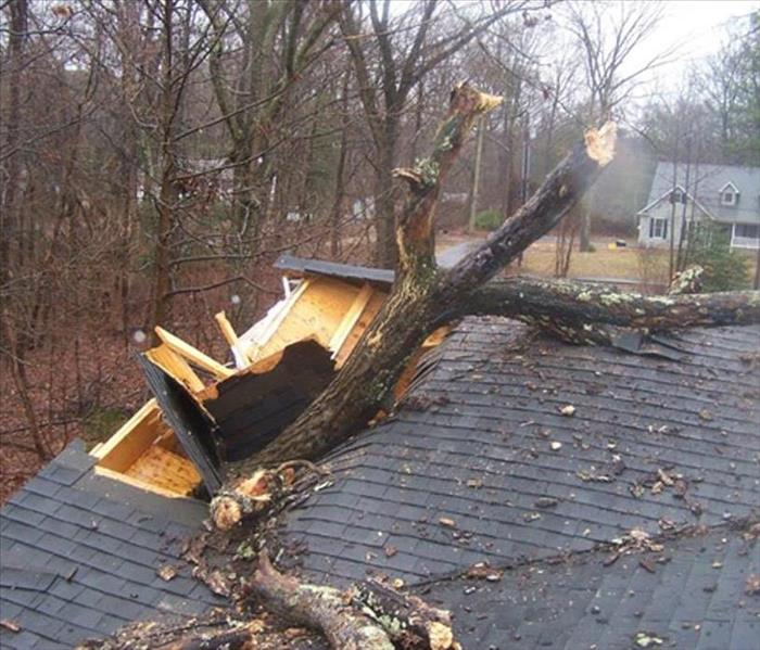 Storm Damage Storms are no stranger to Central Illinois
