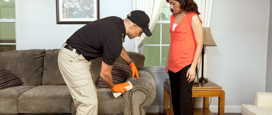 Paris, IL carpet upholstery cleaning